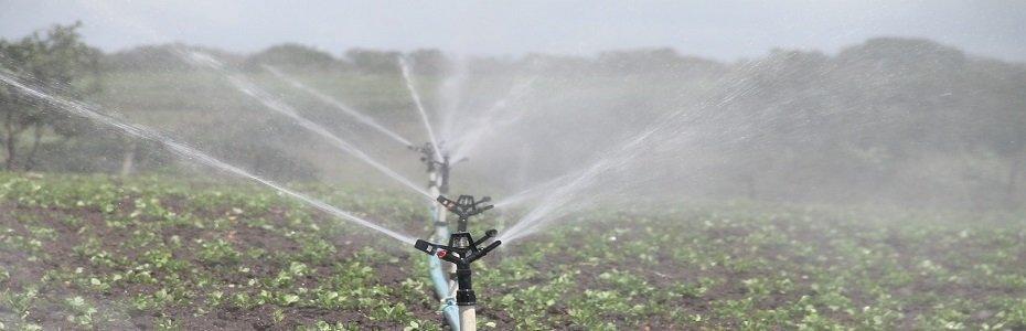 S-ar putea ca fermierii să nu mai plătească irigațiile!