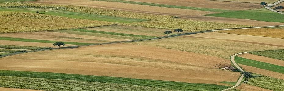 Tinerii fermieri vor avea subvenții mai mari!