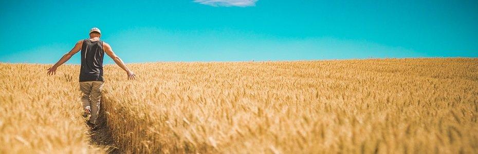 Modificări legale importante pentru SOCIETATILE AGRICOLE