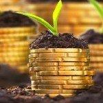 SUBVENȚII: Ce spune NOUL DIRECTOR APIA cu privire la subvențiile pentru agricultori!