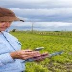 SUBVENȚII APIA: Plata avansurilor către fermieri finalizată! Află sumele transferate în cont!