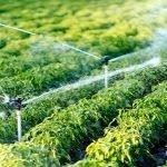 Surse de apă și sisteme de irigații gratis pentru fermieri!