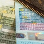 Alte 16 mil de euro subvenții pentru fermieri de la UE