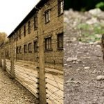 Petre Daea: Acolo este ca la Auschwitz, porcii se trec în partea cealaltă și se pun pe foc