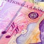 APIA a efectuat plățile aferente ANT sectorul vegetal și zootehnic