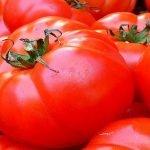 Controale la roșii de inspectorii fitosanitari