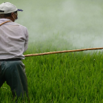 Corteva investește în agricultură organică, alături de Evogene