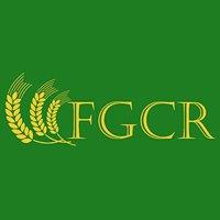 Garanții dedicate finanțării capitalului de lucru