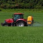 Cum îți protejezi culturile de rapiță și cereale de dăunători
